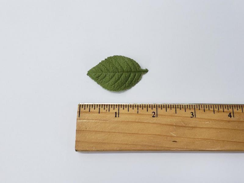 Leaf #2