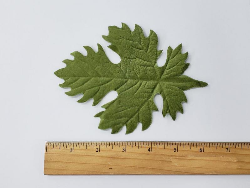 Leaf #19