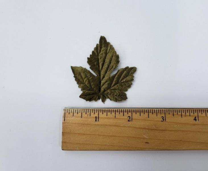 Leaf #21