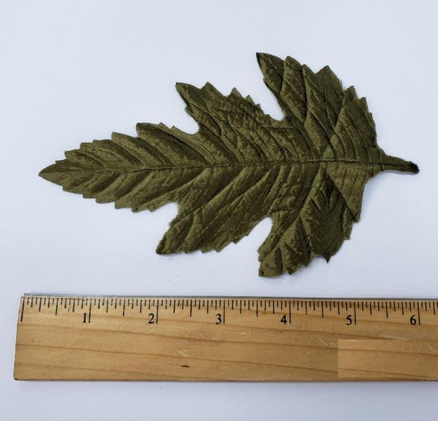 Leaf #25