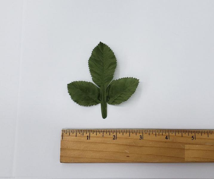 Leaf #47