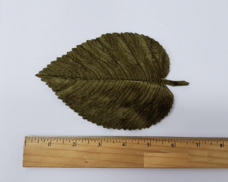 Leaf #49