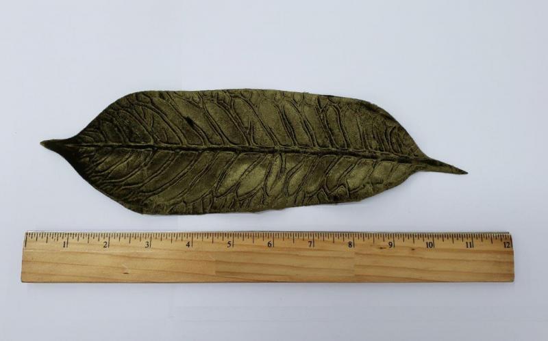Leaf #53