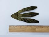 Leaf #34